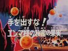 Il frutto magico di Re Yammer Title-Card JP