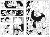 SS en manga