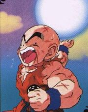 180px-Krillin holds s bomb