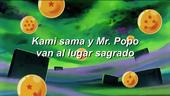 Episodio 113 Dragon Ball Z HD HA