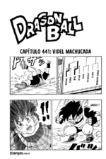 Capitulo441