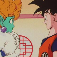 La Principessa incontra Son Goku.