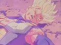 Trunks hurt3