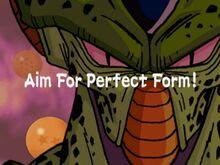 AimforPerfectForm