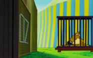 Chobi en una jaula