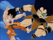 Morte Radish e Goku