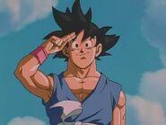 Adios, Goku, hasta que nos volvamos a ver