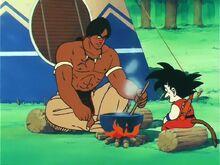 Son Goku e Bora