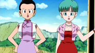 Chichi-and-bulma-dragonball-z-girls-only-30904017-637-358