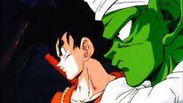 Goku e Junior