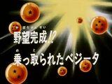 Episodio 27 (Dragon Ball GT)