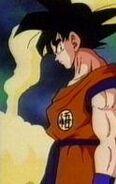Goku26