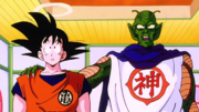 Kami speaks on Goku's Behalf