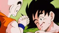 Son Goku parla con Crilin prima di morire