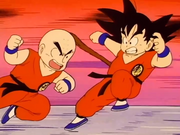 Crilin contro Son Goku