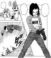 17 Manga DBS