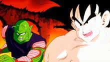 Piccolo et son rival