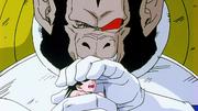 Vegeta Oozaru stringe Goku