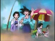 Goku and Chichi and the beach