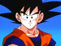Dbz233 - (by dbzf.ten.lt) 20120314-16352213