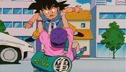 GokuAndRoshi