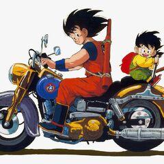 Son Goku e Gohan su una moto in un'illustrazione a colori.
