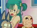 Disaproving bulma
