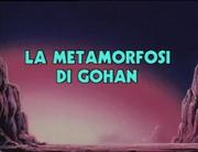 La metamorfosi di Gohan Title-Card