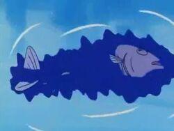 Morte pesce ucciso dai piranha