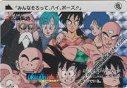Dragon Ball Carddass - Carta de Dragon Ball