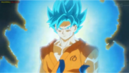 Goku ssja