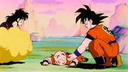 Son Goku salva Son Gohan e Crilin