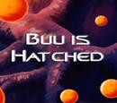 Buu is Hatched