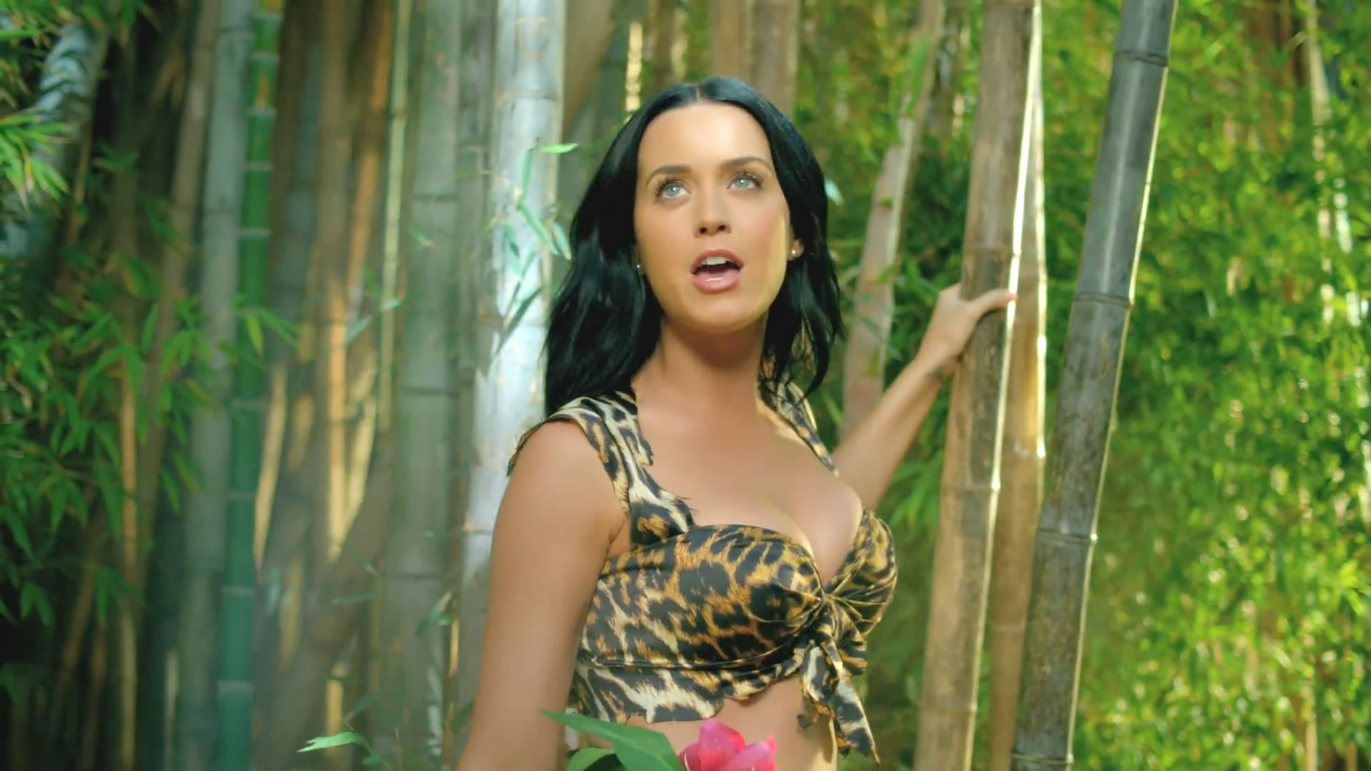 image - katy-perry-roar-music-video-hd--04 | dragon ball wiki