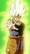 Goku33