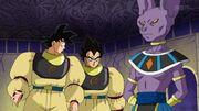 Son Goku Vegeta e Beerus