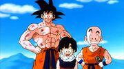 Goku, Crili e Gohan