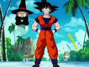 Goku e Baba