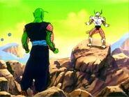 Piccolo vs Freezer4