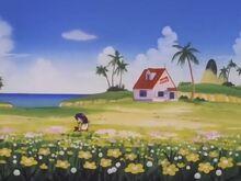 Training Island- Kame House