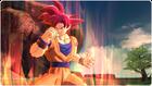 Goku SSJD (BoZ)