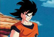 Goku Saiyan Saga