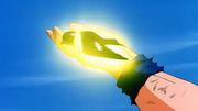 Goku cura un pajaro