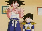 Goku torna a casa