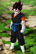 Vegetto SDBH Anime