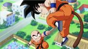DBK Krilin VS Goku
