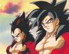 Goku e Vegeta SS 4