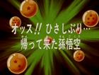 Il misterioso guerriero Title-Card JP