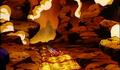 Lava stage BI2