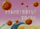 Goku rimane nell'aldilà Title-Card JP